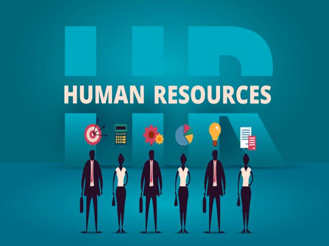 واحد منابع انسانی