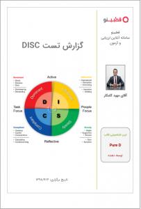 نمونه نتیجه آزمون دیسک