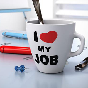 اهداف شغلی، لذت بردن از کار