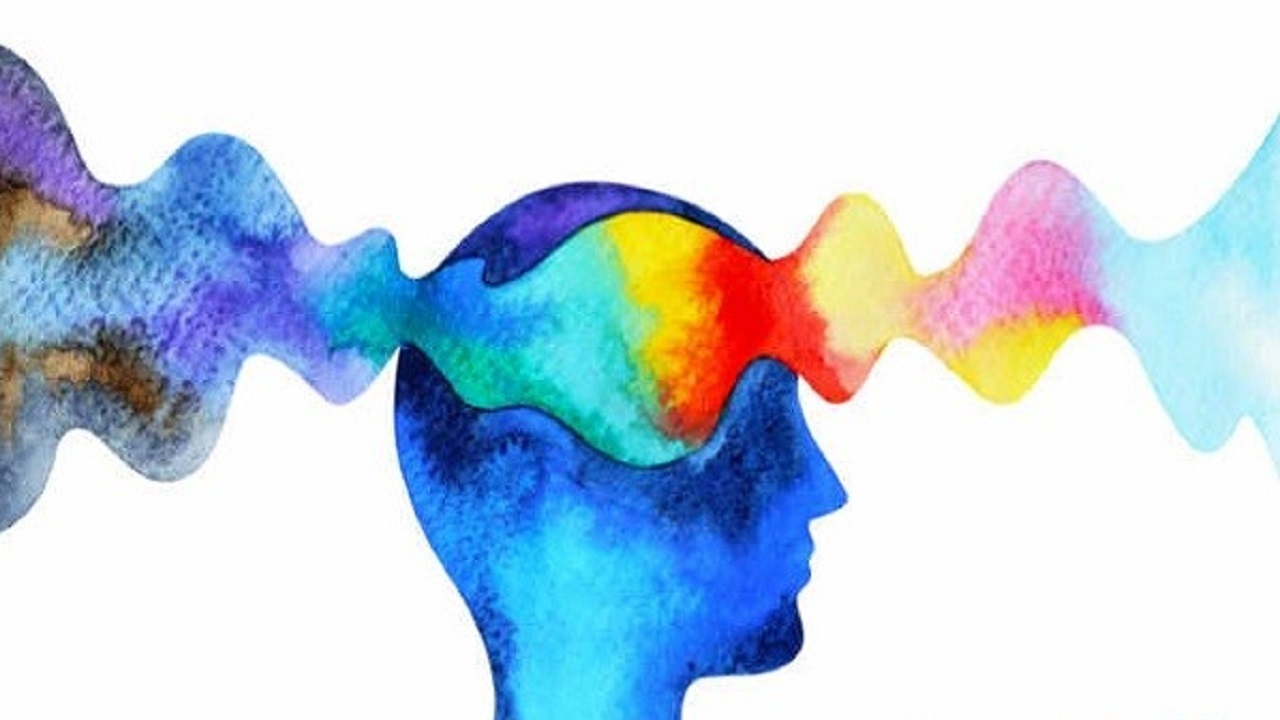 شخصیت شناسی در تصمیمگیری